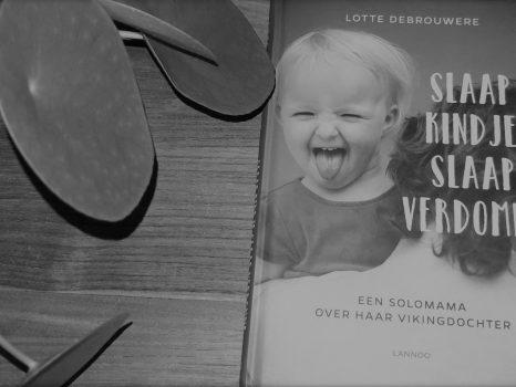 Boekentip: Slaap kindje slaap verdomme (Lotte Debrouwere)